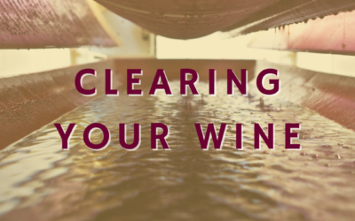 Clearing Your Wine