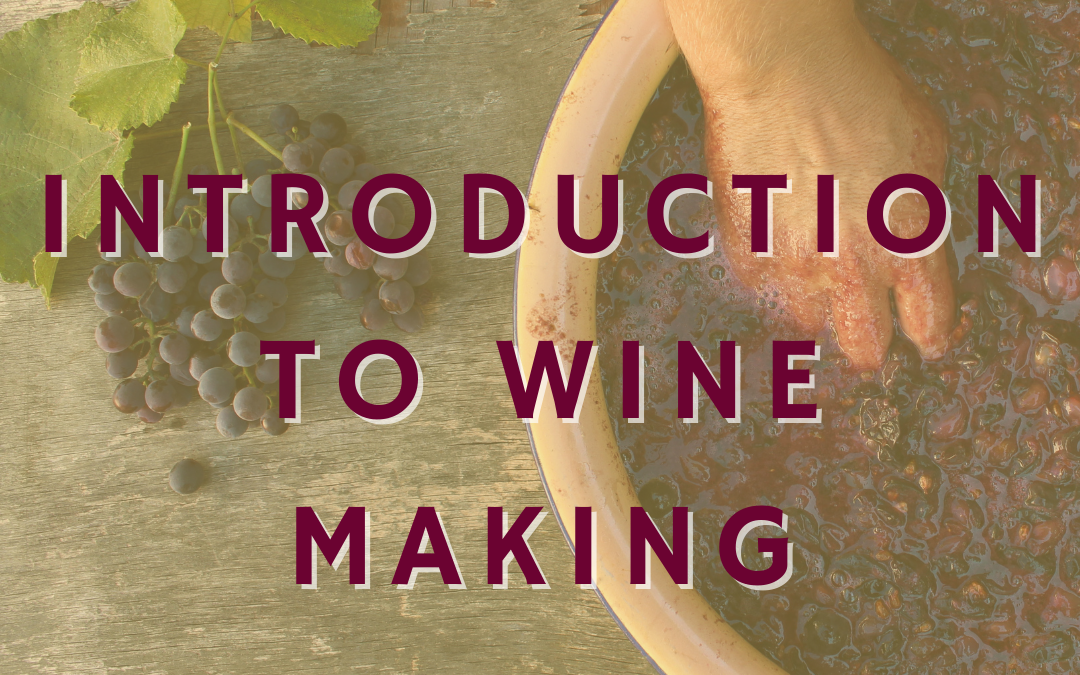 Introduction to Wine Making