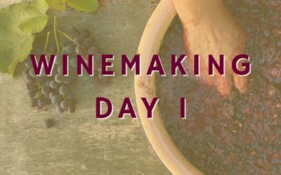 Wine Making – Day 1